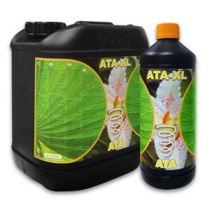ATA XL - 1L