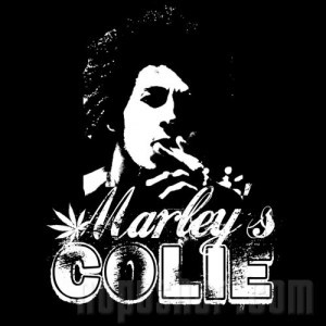 MARLEY'S COLIE