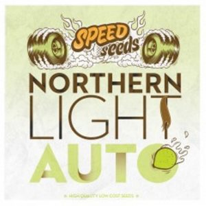 NORTHEN LIGHT AUTO