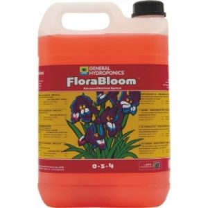 FLORA BLOOM