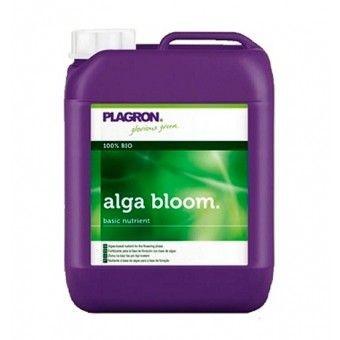 ALGA BLOOM PLAGRON - los 5 sentidos grow shop