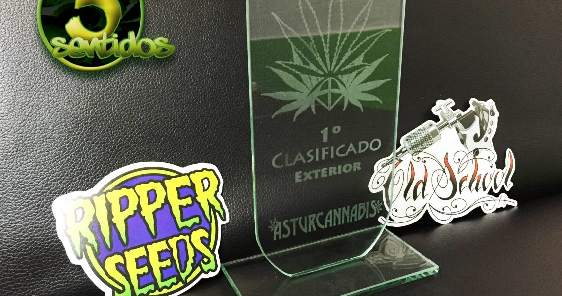 1º premio exterior old school - los 5 sentidos grow shop