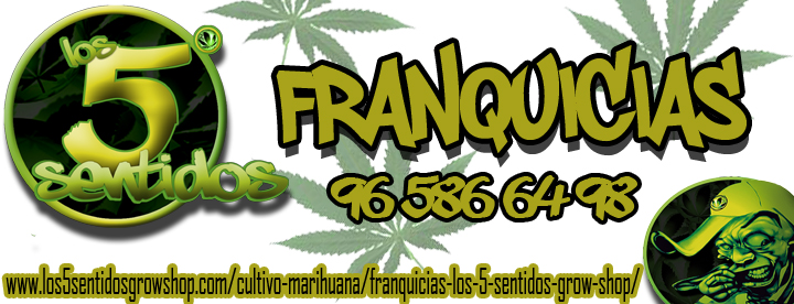 franquicias-grow-shop