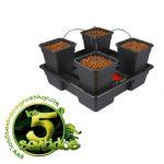 WILMA V2 LARGE 4 (11L) - LOS 5 SENTIDOS GROW SHOP