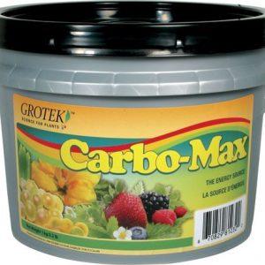CARBO MAX 300 GRS GROTEK