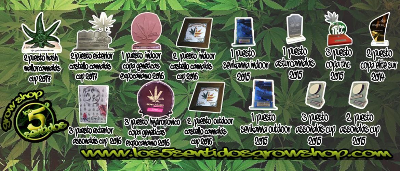 Los 5 Sentidos Grow Shop4