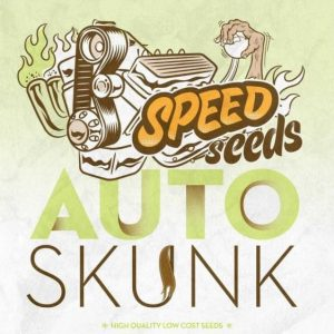 skunk-auto-a-granel-speed-seeds