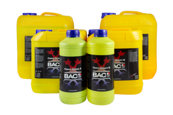 coco a+b grow and bloom b.a.c.- los 5 sentidos grow shop