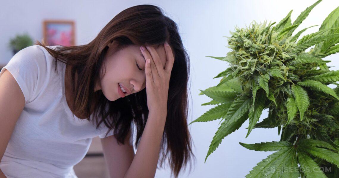 El consumo de Cannabis ayuda con la migraña?