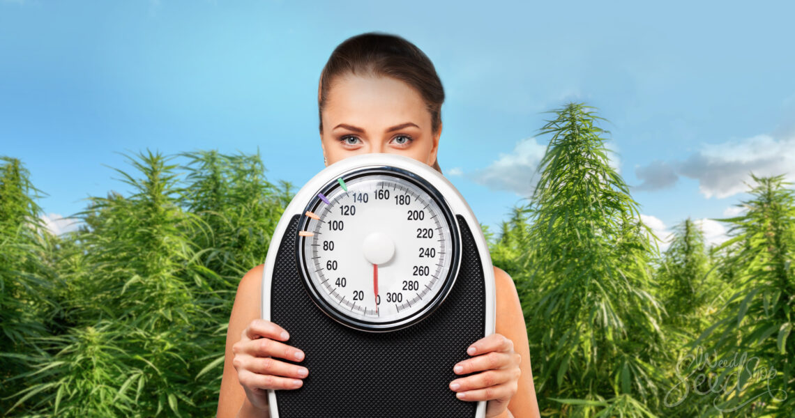 la marihuana adelgaza